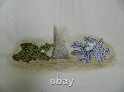 Original Watercolor Drawing Plank Technical Botanical Study Science Mushroom