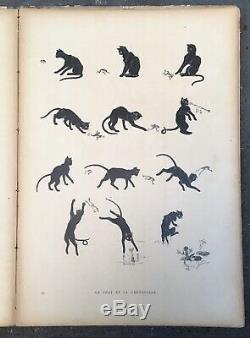 Album DES CHATS Dessins Théophile-Alexandre Steinlen 26 Planches 1898